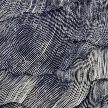 Xilografia di Riccardo Bucella