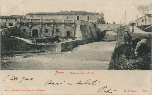 Cartoline da Fano | nobile capitano Gaetano Baviera, fronte