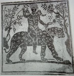 A Fano Bacco è il protettore del Bianchello del Metauro Bacco protegge il bianchello del Metauro Nella mitologia greca Dioniso scopre il vino